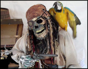 Man dressed as a pirate with a skull mask. A parrot is perched on his shoulder.