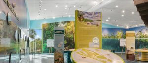 Enjoy all the various exhibits at the Lover's Key Welcome and Discovery Center